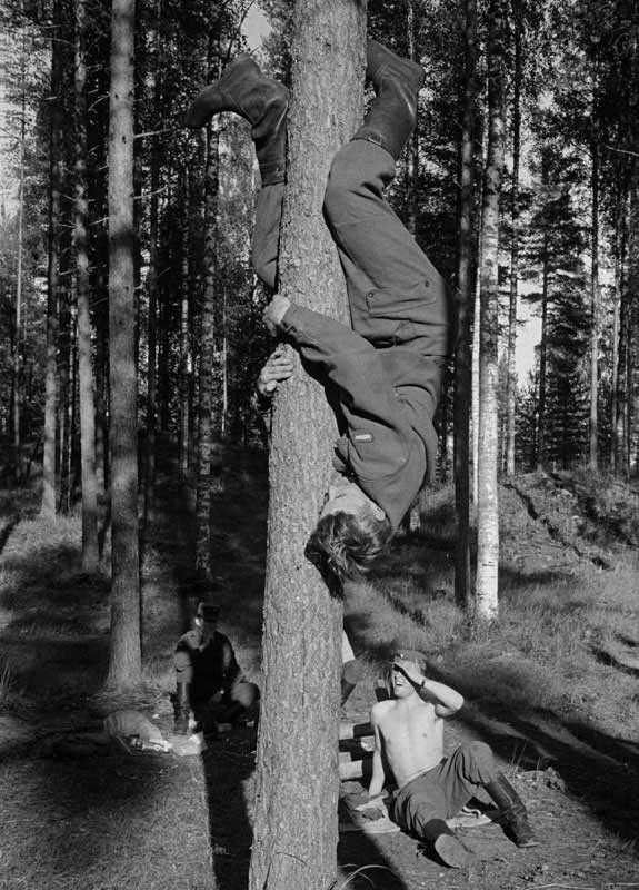 How to climb a tree arse first